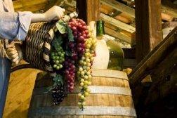 Flowing Wine
