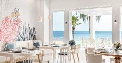 Ikos Andalusia Ouzo Restaurant 2880x1920 mtime20201219131038